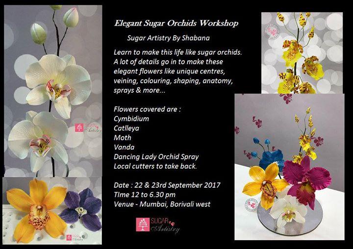 Elegant Sugar Orchids Workshop
