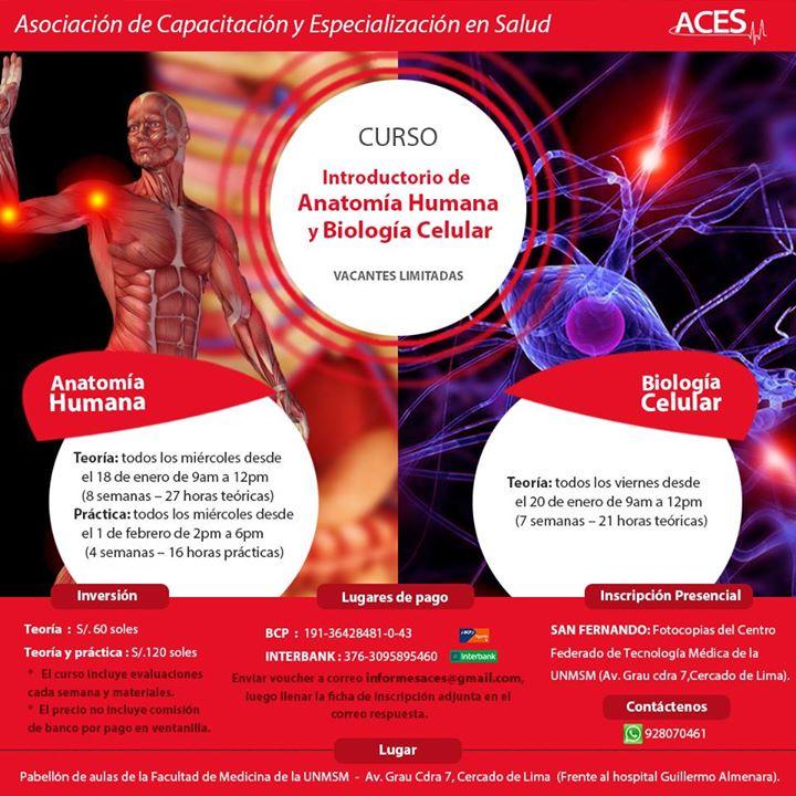 Introductorio de Anatomía Humana y Biología Celular at Facultad de ...
