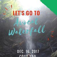 Avocat Waterfall Hike