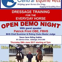 Dressage Training for the everyday horse