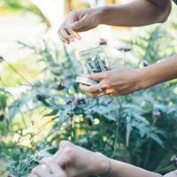 Herbalism Workshop at Great Park 1021