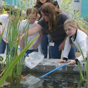 Biodiversity Summer Days Workshops