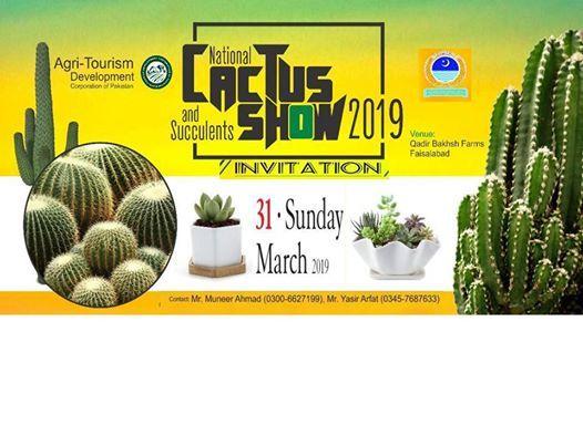 National Cactus & Succulent Show