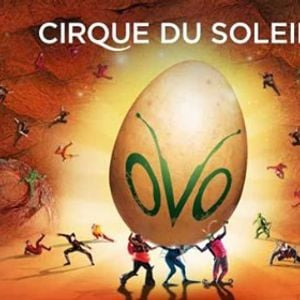 Ovo O Novo Espetculo Do Cirque Du Soleil.