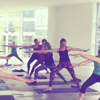 Yin  Yang Fusion Yoga Workshop