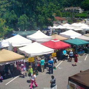 2019 Lake Lure Spring Arts & Crafts Festival