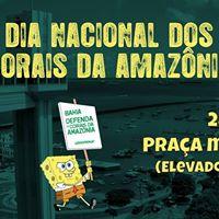 Dia Nacional dos Corais da Amaznia