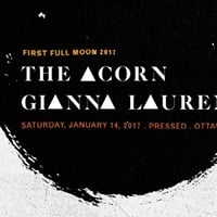 The Acorn  Gianna Lauren