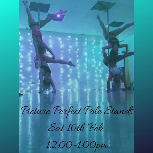 Picture Perfect Pole Stands Flexi Handstand Workshop