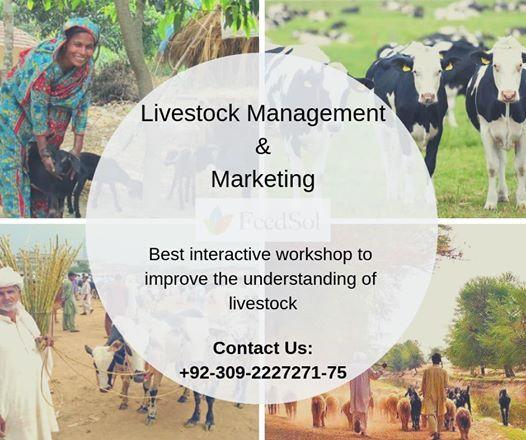 3-Days Training session on livestock management and marketing