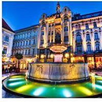 Le capitali del Danubio Vienna Bratislava e Budapest.