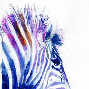 ArtNight Zebra am 24062019 in Frankfurt