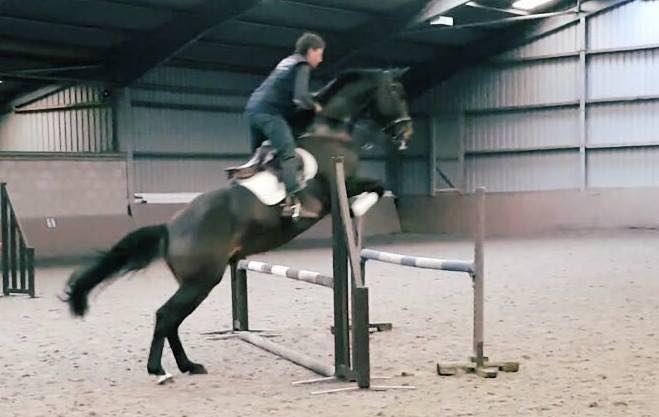 Jumping Clinic with Lester Miller