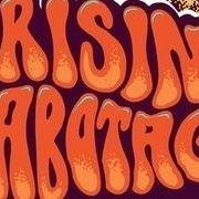 Concert Risin Sabotage (stoner psy)afterparty la Satu Mare