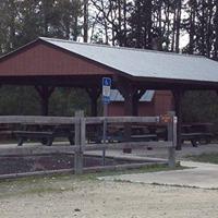 Equestrian Trail Ride Etoniah Creek State Forest