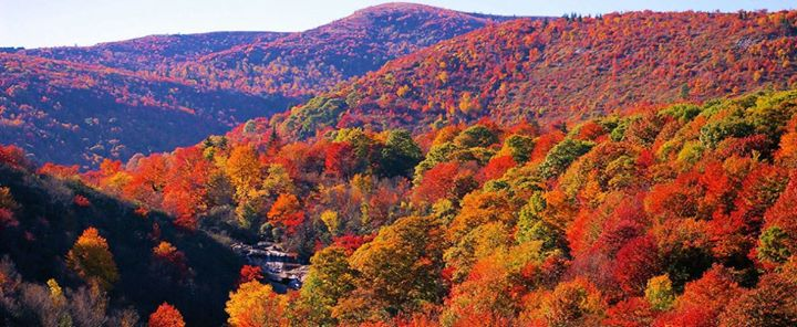 killingtonblog.com, Killington Vermont: Fall Foliage Update ...