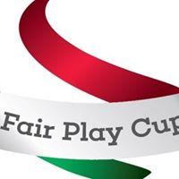 Fair Play Cup 2017 tavasz - Megyei dnt fi-lny