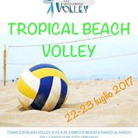 Tropical beach volley