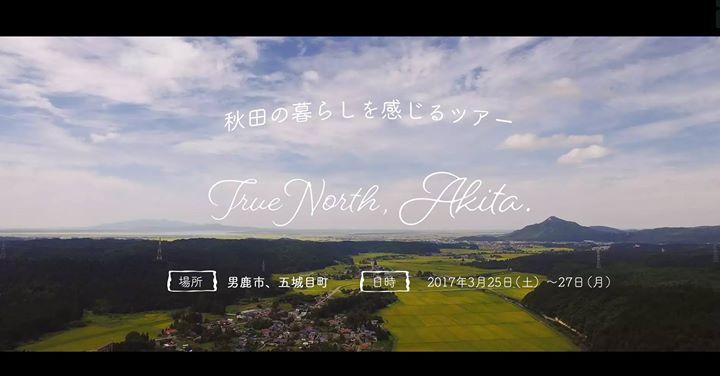 True North Akita