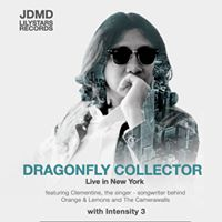 Dragonfly Collector Live in New York
