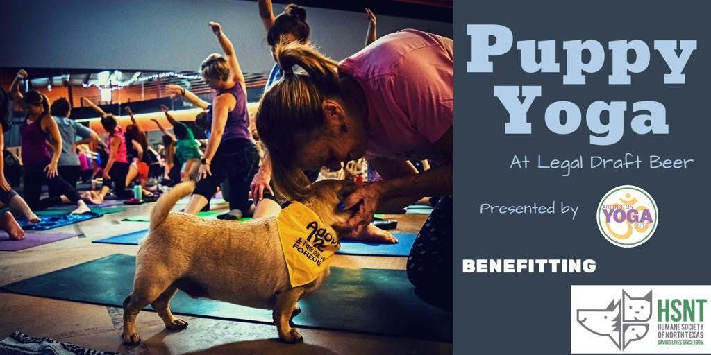 Puppy Yoga  Adoption Event