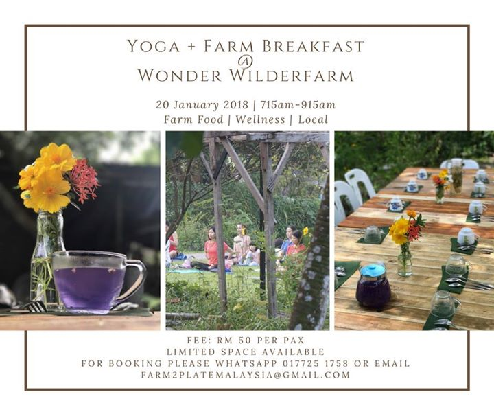 Confirmed Yoga Wonder Wilderfarm