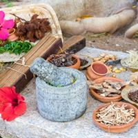 Ayurvedic Wellness for The Heart and Mind