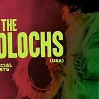 The Molochs Live at six dogs