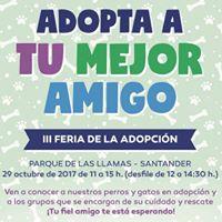 III Feria de la Adopcin