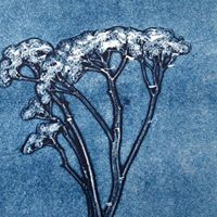 Monotypes from Nature Workshop