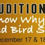 Auditions for I Know Why the Caged Bird Sings