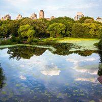 Central Park Private Tours - (Various Dates)