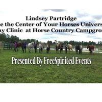 Lindsey Partridge Be The Center of Your Horses Universe