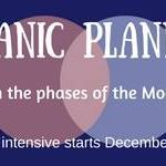 Organic Moonbased Planning