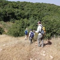Ajloun Forest Reserve trip 28th of july