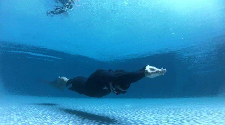 Fundamentals of Freediving Course (AIDA 2)