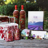 Ningxia Products for Energy &amp Wellness