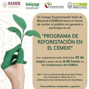 Programa de reforestacin en el Campo Experimental Valle de Mexi