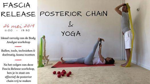 Fascia Release Posterior Chain & Yoga