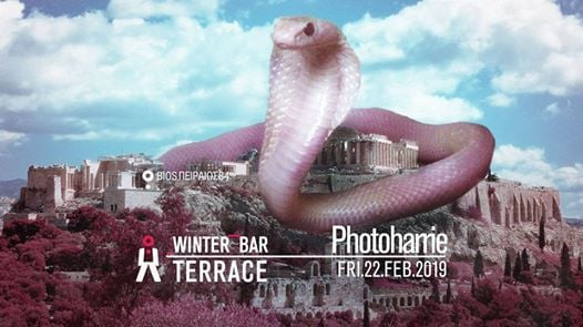 Photoharrie at the winter barBios terrace