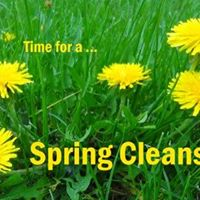 12 day Workshop Individualized Ayurvedic Spring Cleanse