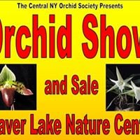 Central New York Orchid Society show and sale