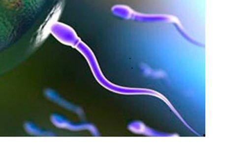 Fertilitet reakupunkturAuriculoterapi temadag