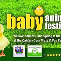 Baby Animal Festival - June 3 4 10 &amp 11