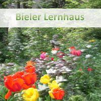Bieler Lernhaus 2016