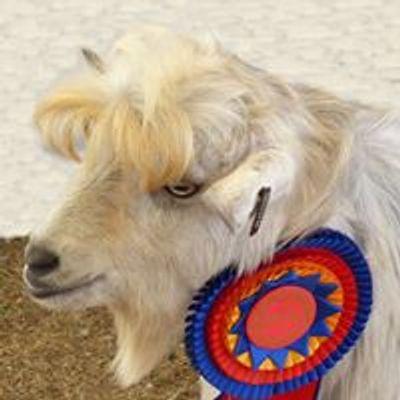 Australian All Breeds Miniature Goat Society Inc. Shows