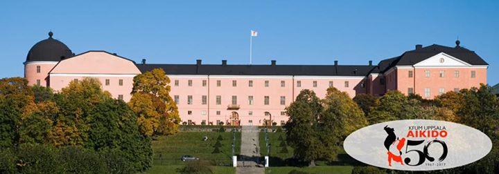 aikido 50 år Uppsala Aikido 50 år   jubileumsmiddag at Uppsala slott, Uppsala aikido 50 år