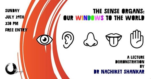 The Sense Organs Our Windows to the World