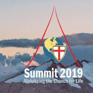 ySummit Mobilizing Young Anglicans for Life