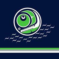 Team Salmon at Tri Cities Charity Street Hockey Challenge